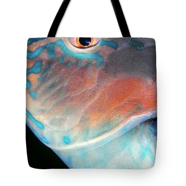 Parrotfish 2 Tote Bag by Dawn Eshelman