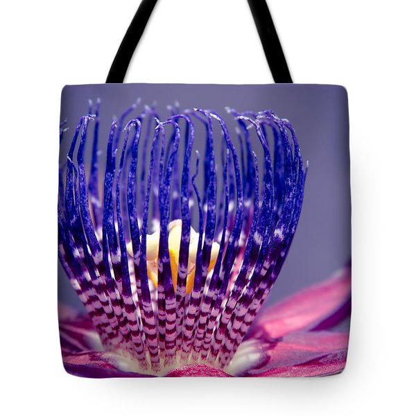 Passiflora Alata - Ruby Star - Ouvaca - Fragrant Granadilla -  Winged-stem Passion Flower Tote Bag by Sharon Mau