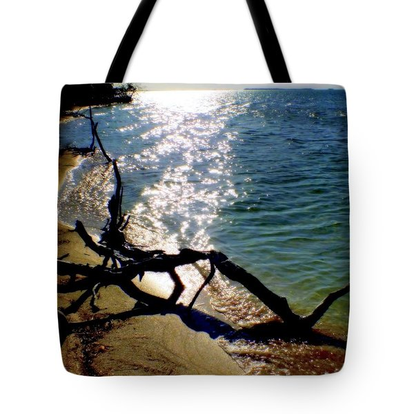 Passing Of Time Tote Bag by Karen Wiles