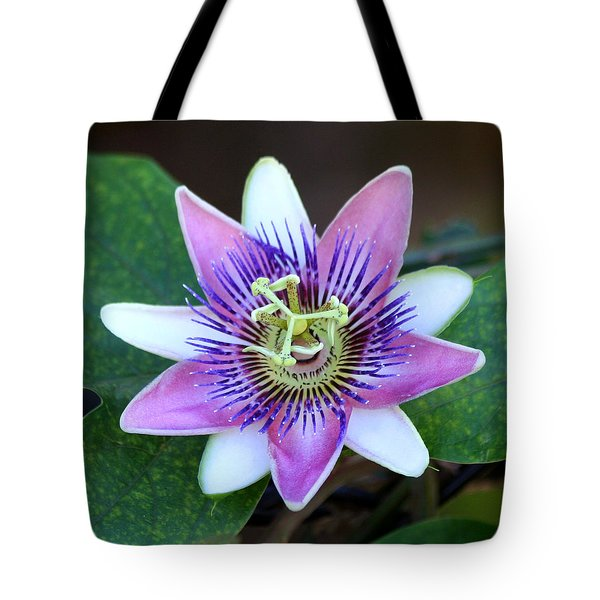 Passion Flower Tote Bag by Art Block Collections