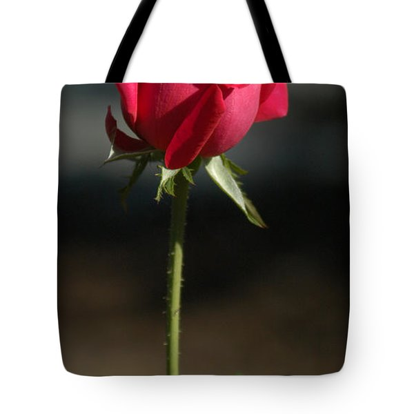 Passionate Lady Tote Bag by Penny Lisowski