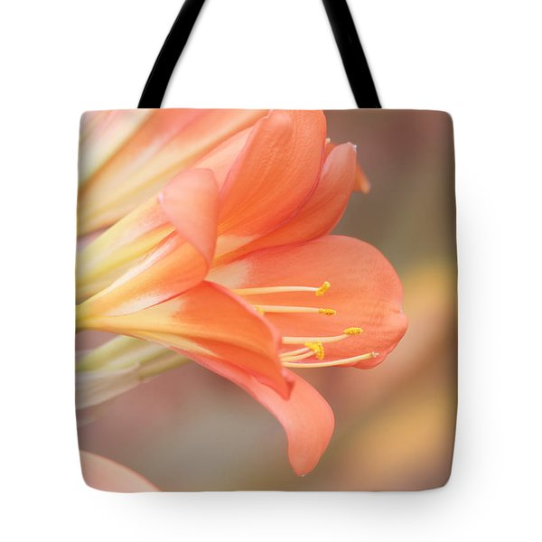 Pastels Tote Bag by Kim Hojnacki