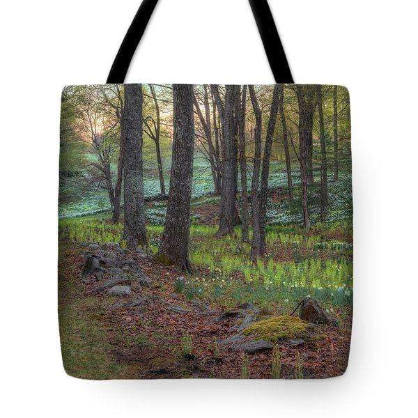 Path to the Daffodils Tote Bag by Bill  Wakeley