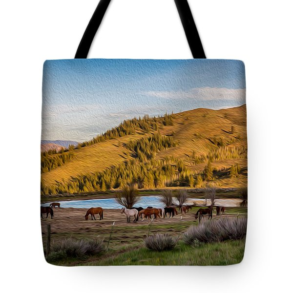 Patterson Mountain Afternoon View Tote Bag by Omaste Witkowski