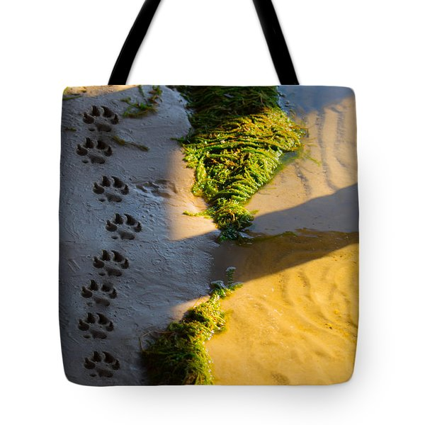 Pawprints In The Sand Tote Bag by Parker Cunningham