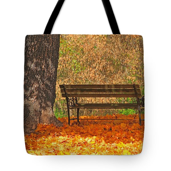 Peace And Quiet Tote Bag by Geraldine DeBoer