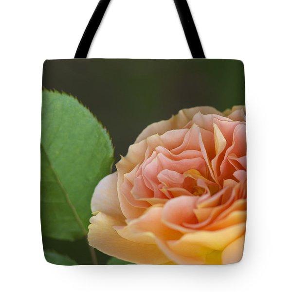 Peace Rose Tote Bag by Jane Eleanor Nicholas