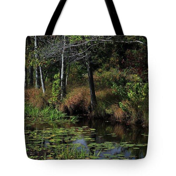 Peaceful Pond Tote Bag by Karol Livote