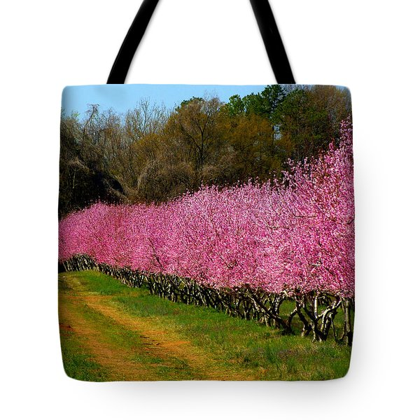 Peach Orchard In Carolina Tote Bag by Lydia Holly