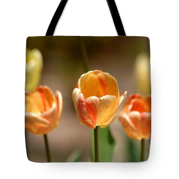 Peaches And Cream Tote Bag by Living Color Photography Lorraine Lynch