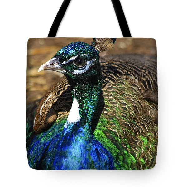 Peacock Blue Tote Bag by Deborah Benoit