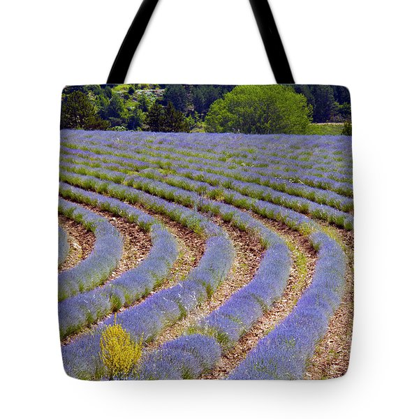 Peaking Tote Bag by Bob Phillips
