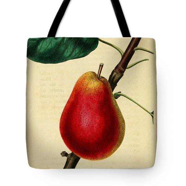 Pear 1829 Tote Bag by Philip Ralley