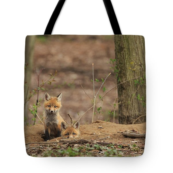Peeking From The Fox Hole Tote Bag by Everet Regal
