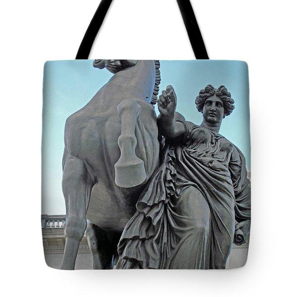 Pegasus Tamed Tote Bag by Barbara McDevitt