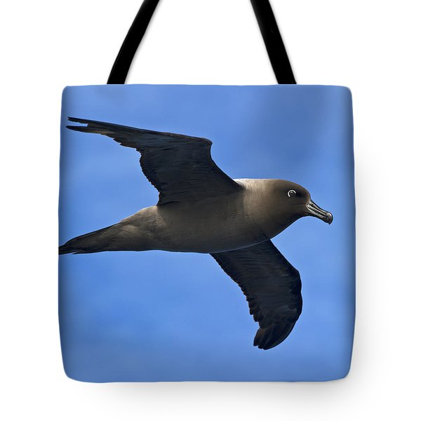 Pelagic Seabird... Tote Bag by Nina Stavlund