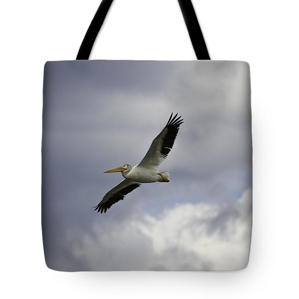 Pelican In Flight Tote Bag by Thomas Young