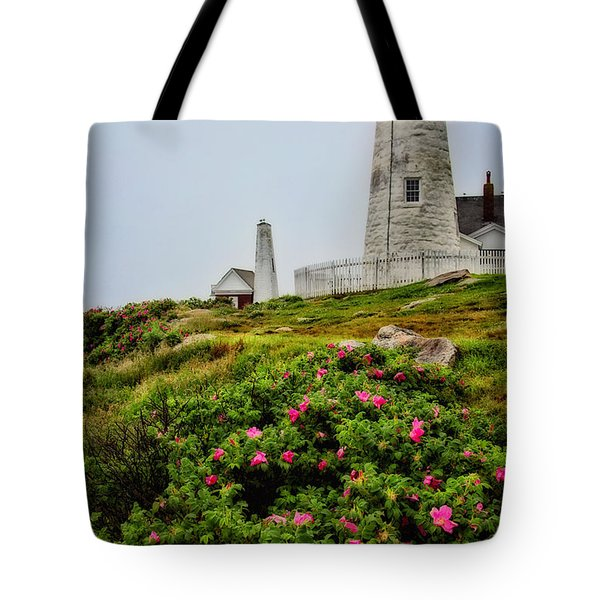 Pemaquid Point Tote Bag by Karol Livote