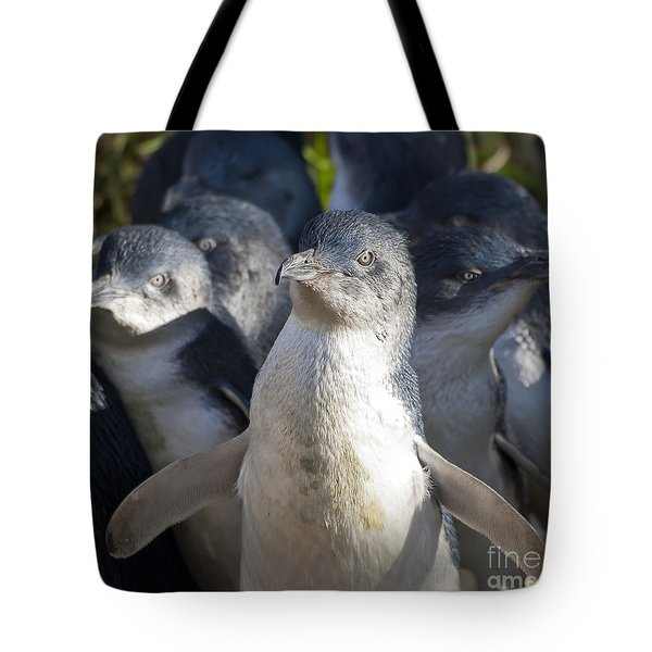 Penguins Tote Bag by Steven Ralser
