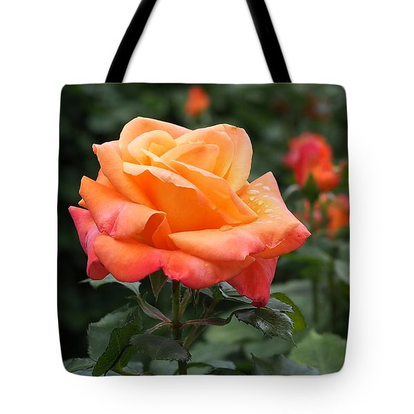 Pensioners Voice Roses Tote Bag by Rona Black