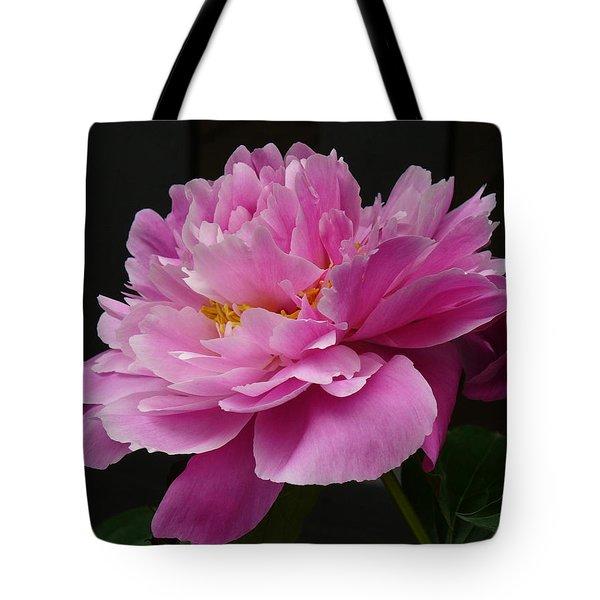 Peony Blossoms Tote Bag by Lingfai Leung