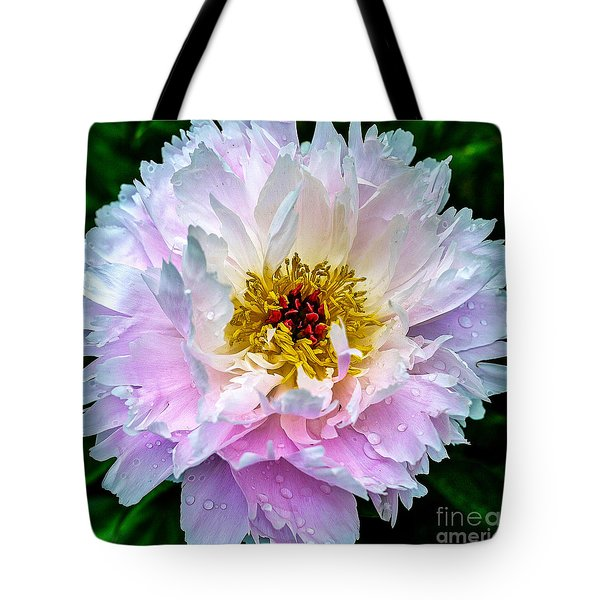 Peony Flower Tote Bag by Edward Fielding