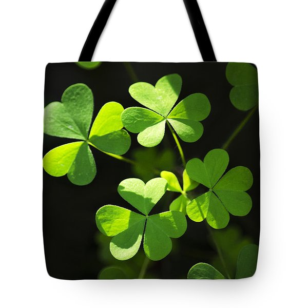 Perfect Green Shamrock Clovers Tote Bag by Christina Rollo
