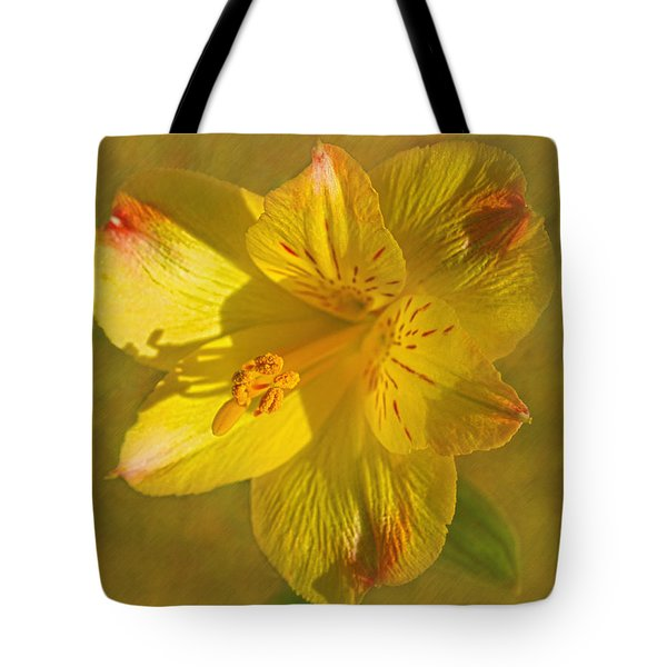 Peruvian Lily Tote Bag by Sandi OReilly