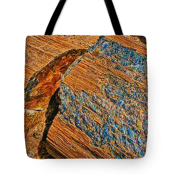 Petrified Forest Logs Tote Bag by Bob and Nadine Johnston