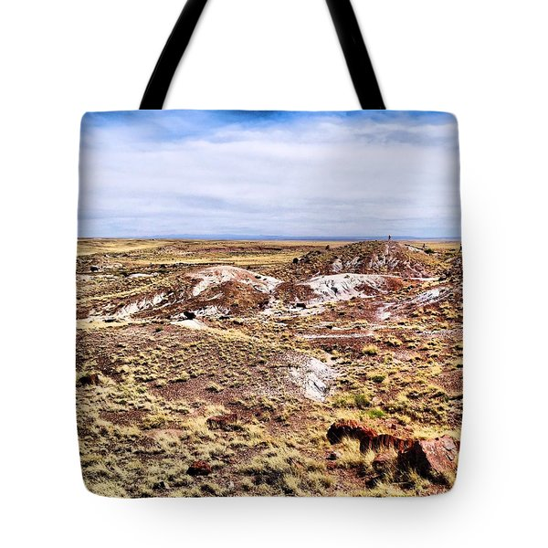 Petrified Forest National Park Tote Bag by Dan Sproul