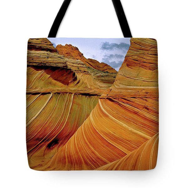 Petrified Sand Dunes The Wave Tote Bag by Ed  Riche
