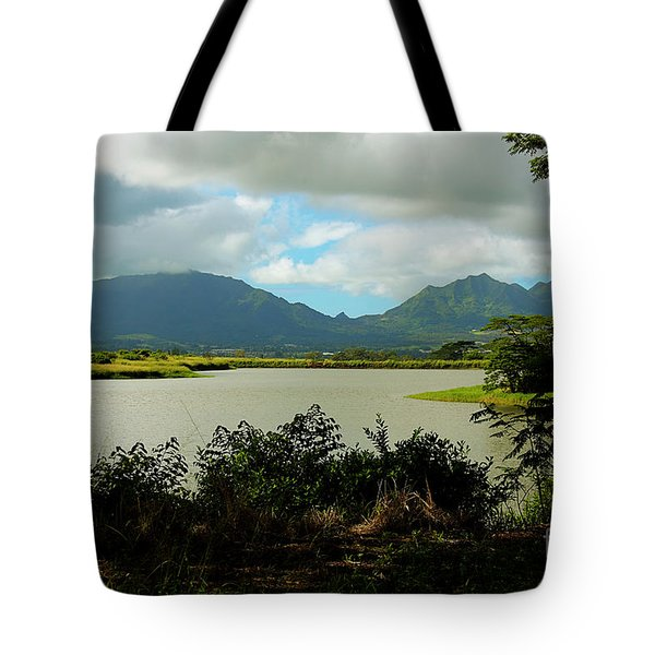Picnic Spot Tote Bag by Cheryl Young