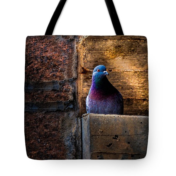 Pigeon of the City Tote Bag by Bob Orsillo