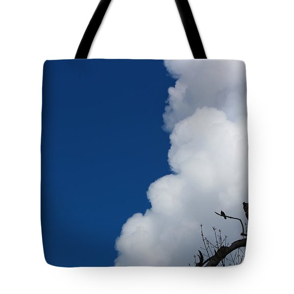 Pigeons Follow Clouds Tote Bag by Kym Backland