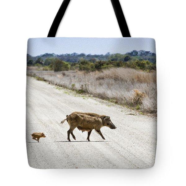 Piglet Tote Bag by Patrick M Lynch