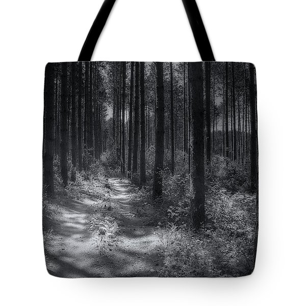 Pine Grove Tote Bag by Scott Norris
