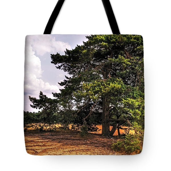Pine Tree In Hoge Veluwe National Park 1. Netherlands Tote Bag by Jenny Rainbow