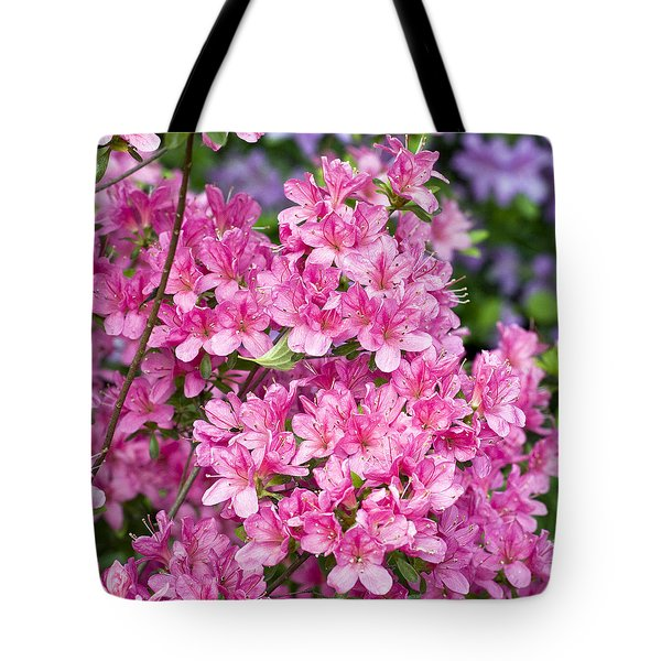 Pink And Blue Rhododendron Tote Bag by Frank Tschakert
