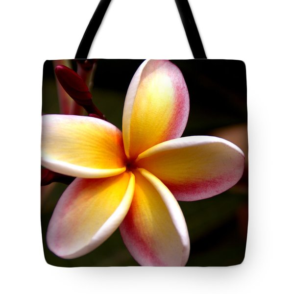 Pink and Yellow Plumeria Tote Bag by Brian Harig