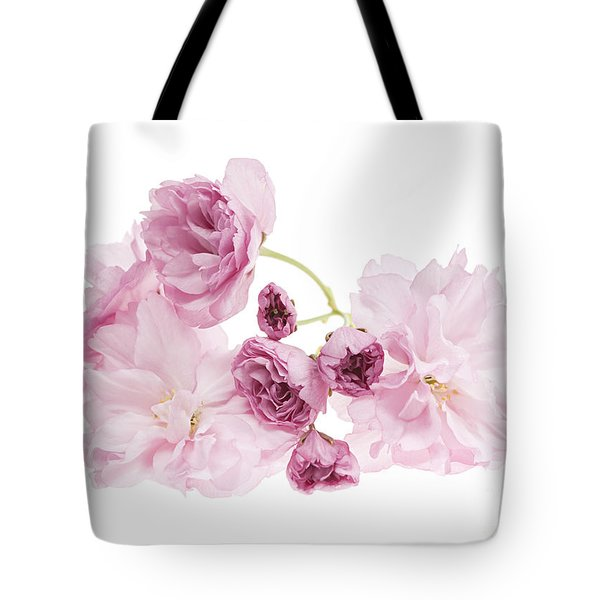 Pink cherry blossoms Tote Bag by Elena Elisseeva