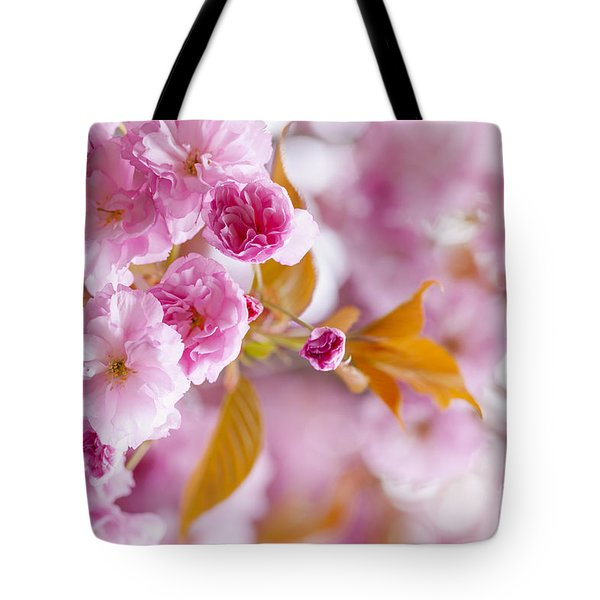 Pink cherry blossoms in spring orchard Tote Bag by Elena Elisseeva