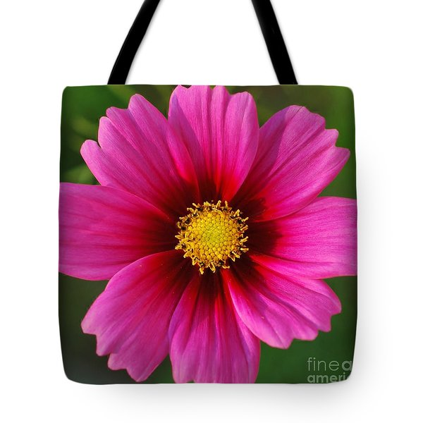 Pink Cosmos Tote Bag by Kathleen Struckle