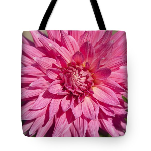 Pink Dahlia II Tote Bag by Peter French