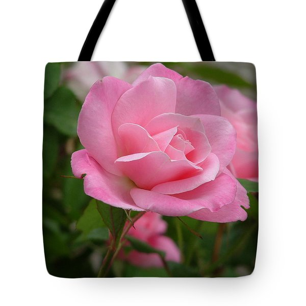 Pink Delicacy Tote Bag by Lorna Hooper