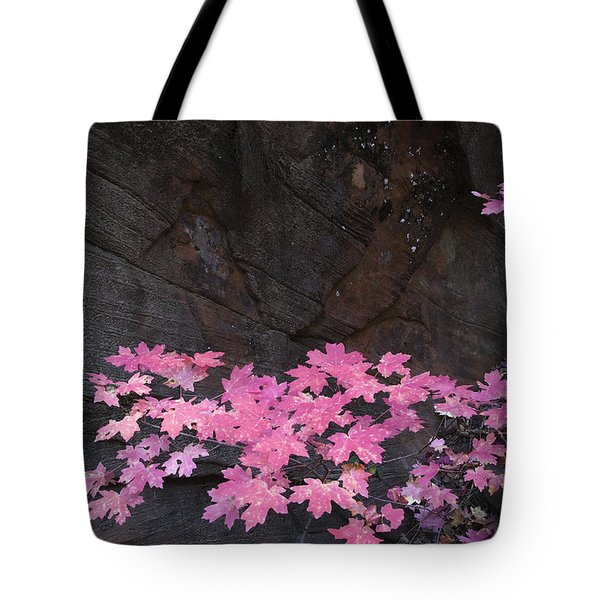 Pink Fall colors in Sedona Arizona Tote Bag by Dave Dilli