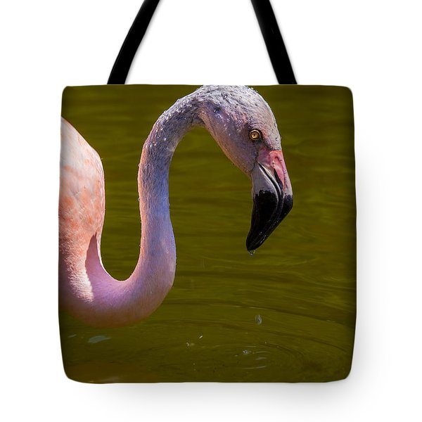 Pink Flamingo Tote Bag by Garry Gay