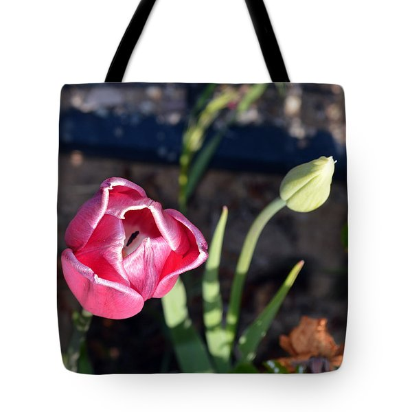 Pink Flower And Bud Tote Bag by Brent Dolliver