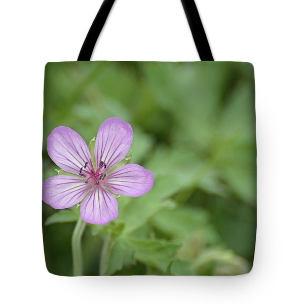 Pink Geranium In Bloom In Yellowstone Tote Bag by Bruce Gourley
