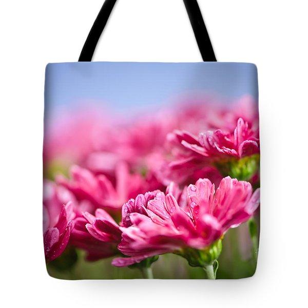 Pink mums Tote Bag by Elena Elisseeva