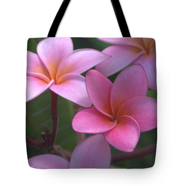 Pink Plumeria Tote Bag by Brian Harig